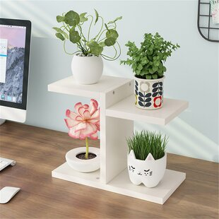 Ebern Designs Ahl Rectangular Multi Tiered Plant Stand Special Event