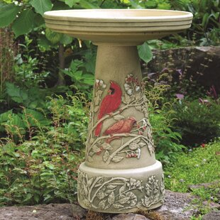 Birds Choice Burley Clay Summer Cardinal Birdbath