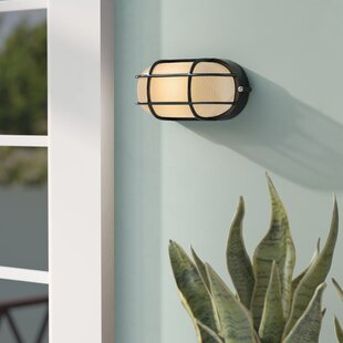 Rivka 1-Light Glass Shade Outdoor Bulkhead Light