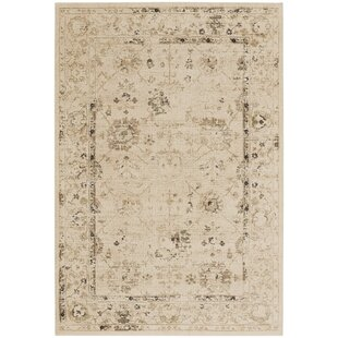 Eila Buff Indoor/Outdoor Area Rug