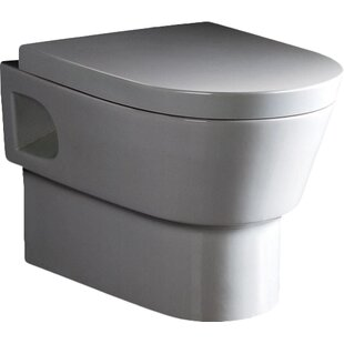 EAGO Dual-Flush Elongated Wall-Mount Toilet (Seat Included)