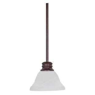 Read Reviews Poneto 1-Light Cone Pendant By Charlton Home