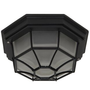 Berezinsky Outdoor Flush Mount By Winston Porter Outdoor Lighting