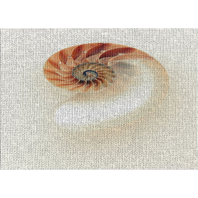 East Urban Home Sea Shells 1 Beige Area Rug Wayfair