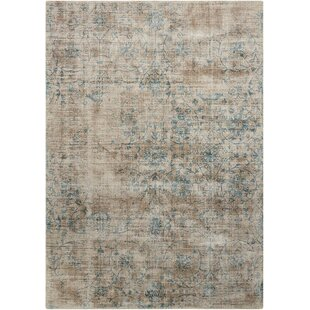 Desert Skies Hand-Loomed Brown Area Rug by Kathy Ireland Home Gallery
