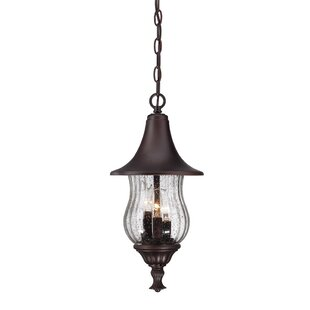 Affordable Price Berriman 3-Light Outdoor Hanging Lantern By Fleur De Lis Living