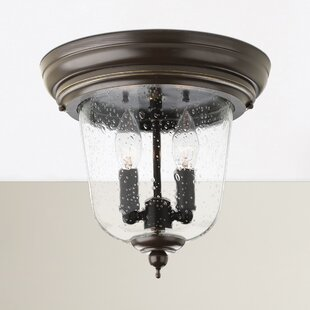 Price Check Drumakeely 2-Light Outdoor Flush Mount By Alcott Hill