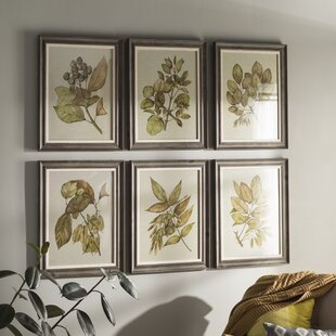 Seedlings 6 Piece Framed Graphic Art Set & Wall Art | Birch Lane