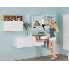 Signature Series Free Mirror 31.5 W x 23.62 H Cabinet by Ronbow