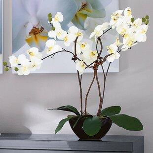 Orchid Flower in Pot & Artificial \u0026 Fake Flowers Artificial Plants You\u0027ll Love | Wayfair.co.uk