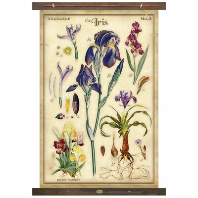 Charlton Home Iris Tapestry