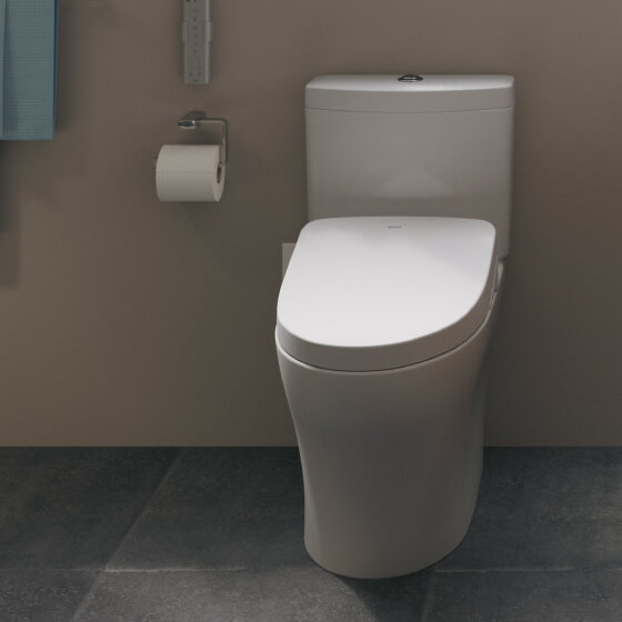Super Washlet S550E Modern Elongated Toilet Seat Bidet Onthecornerstone Fun Painted Chair Ideas Images Onthecornerstoneorg