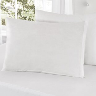 All-In-One Bed Bug Pillow Protector (Set of 2)