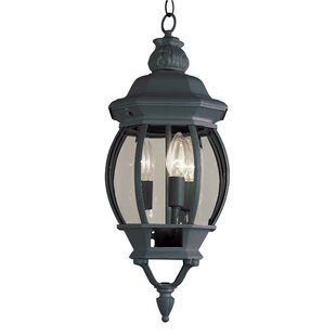 Claypool 3-Light Outdoor Hanging Lantern