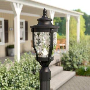 Urbanski Outdoor 1-Light LED Lantern Head by Charlton Home