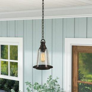 Williston Forge Marilou 1-Light Outdoor Hanging Lantern