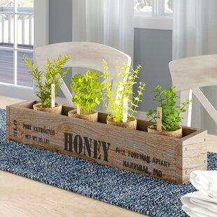 Pinheiro Wood Tray Centerpiece Box 'Honey' Accent