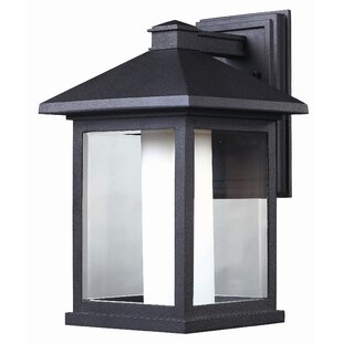 Andover Mills Olive 1-Light Outdoor Wall Lantern