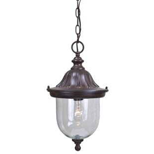 Ledbetter 1-Light Outdoor Hanging Lantern By Charlton Home Outdoor Lighting