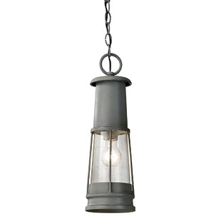 Daisy 1 Light Outdoor Hanging Lantern By Longshore Tides