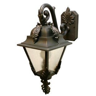 Compare prices Petrey 1-Light Outdoor Wall Lantern By Alcott Hill