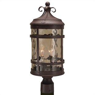 Charlton Home Oakhill Outdoor 2-Light Post Light
