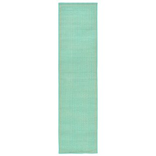 Clatterbuck Aquamarine Indoor/Outdoor Area Rug