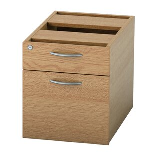 Derry 2-Drawer Lockable Filing Cabinet By Mercury Row