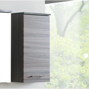 Kasturi 35cm X 69cm Wall Mounted Cabinet By 17 Stories