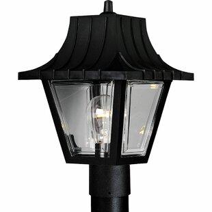 Savings Triplehorn 1-Light Plastic Lantern Head By Alcott Hill