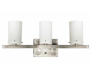 Ebern Designs Philips 3-Light Vanity Light