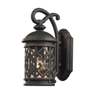 Darby Home Co Robyn 1-Light Outdoor Wall Lantern