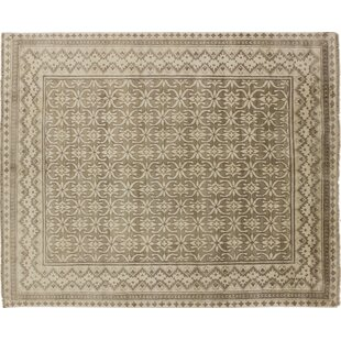 One Of A Kind Viscose Hormizd Hand Knotted Brown Area Rug