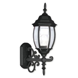 Darby Home Co Beth 1-Light Outdoor Sconce