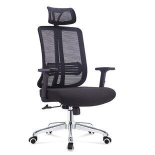 Pinnix Multi Function Ergonomic Mesh Task Chair
