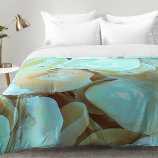 Shells Comforter Set by East Urban Home