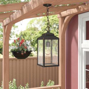 Brayden Studio Knushevia 1-Light Outdoor Hanging Lantern