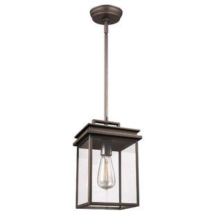 Brayden Studio Krupa 1-Light Outdoor Hanging Lantern