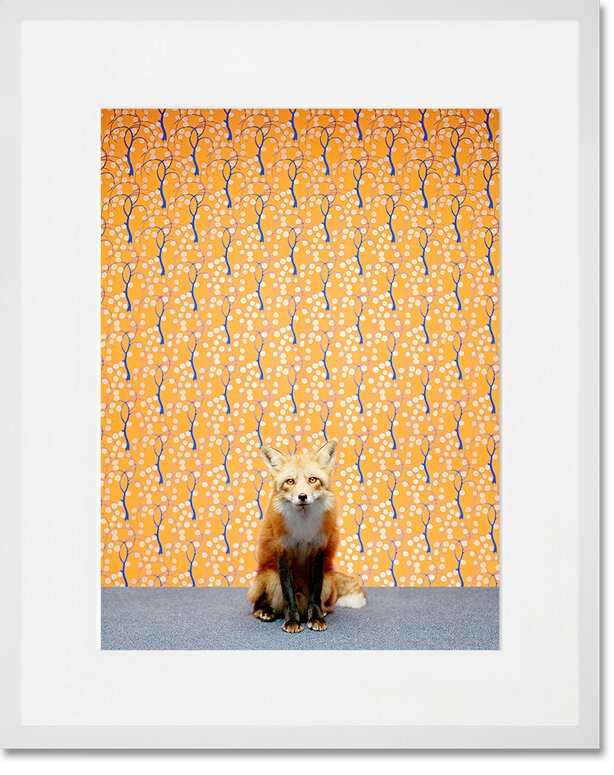'Fox on Orange' by Catherine Ledner Framed Graphic Art - Shop Drew's Honeymoon House {Jonathan's Guest Suite} #foxart #foxprint #PropertyBrothers
