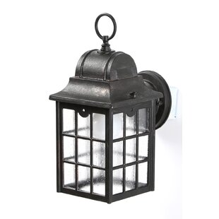 Archard Rustic 1-Light Outdoor Wall lantern