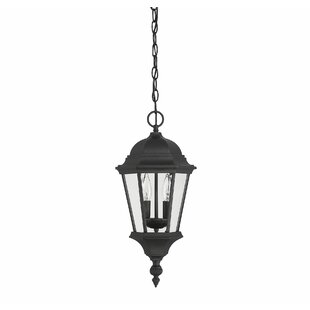 Clearance Randel 2-Light Outdoor Hanging Lantern By Charlton Home