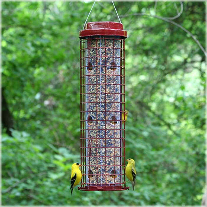 Easy Caged Tube Bird Feeder
