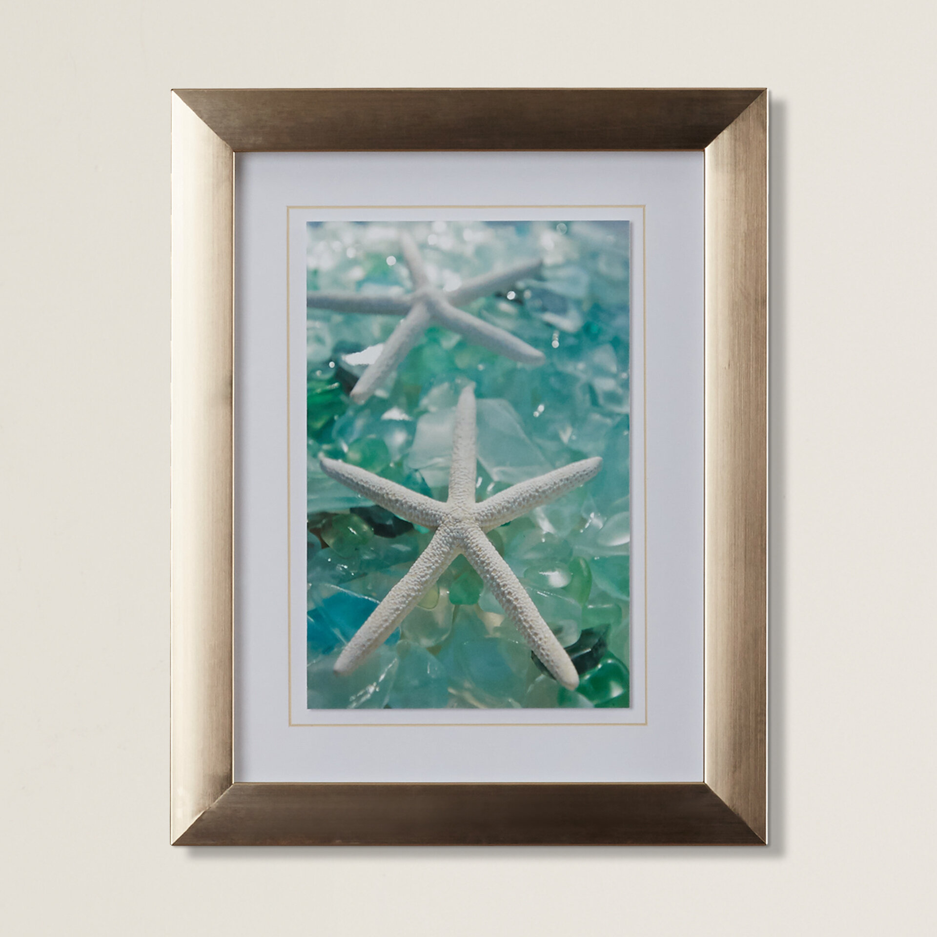 Highland Dunes \'Sea Glass Shells III\' Framed Photographic Print ...