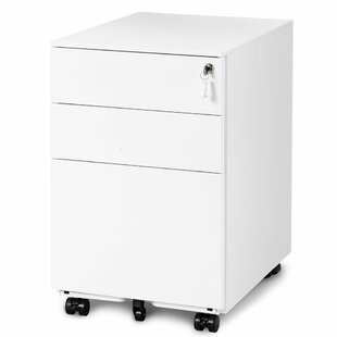 Raines 3 Drawer Filing Cabinet By Symple Stuff