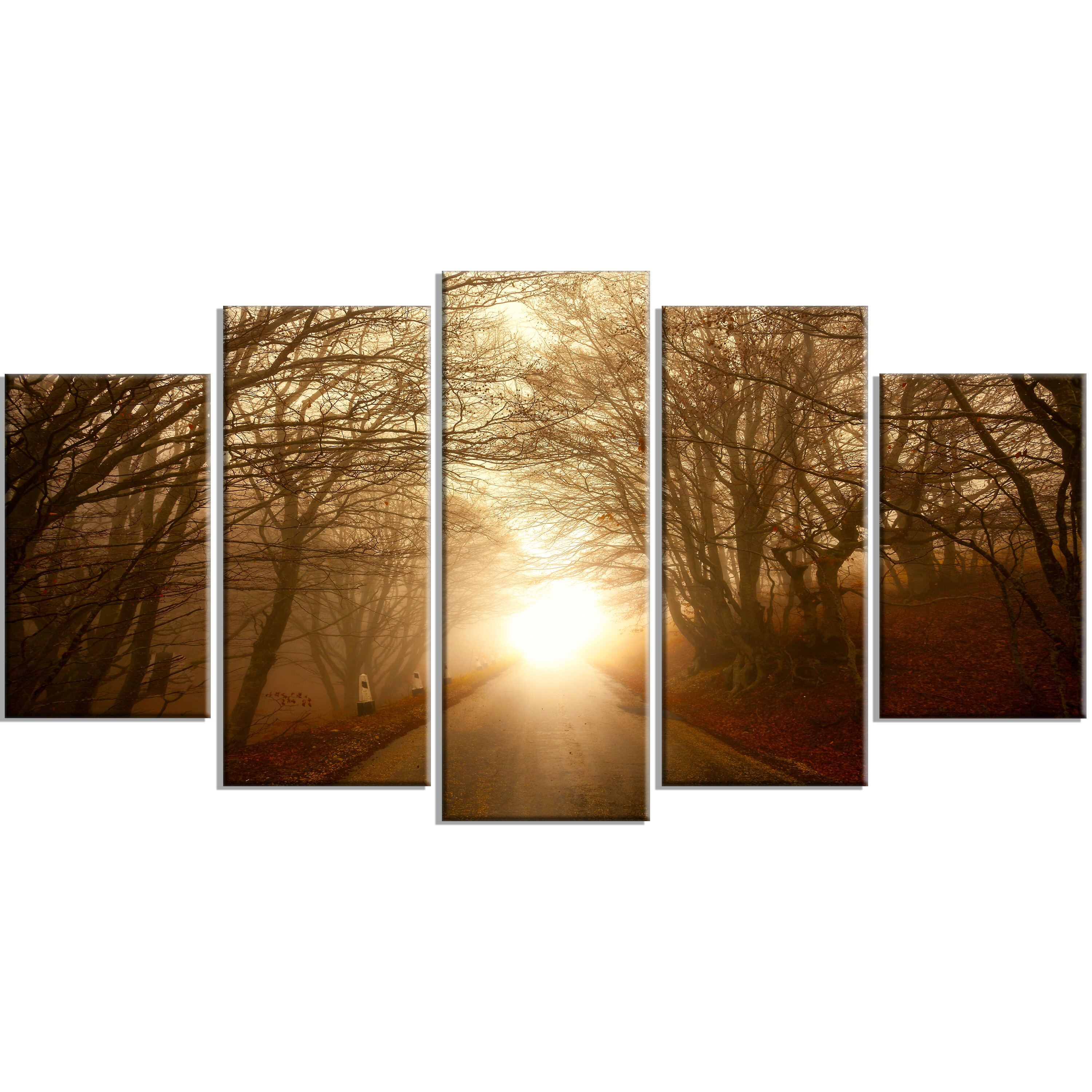 Designart Path To Sunlight In Autumn Forest 5 Piece Wall Art On Wrapped Canvas Set Wayfair