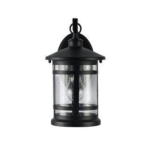 Best Brasher 1-Light Outdoor Wall Lantern By Alcott Hill