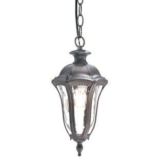 Beldi Sutton 1-Light Outdoor Hanging Lantern