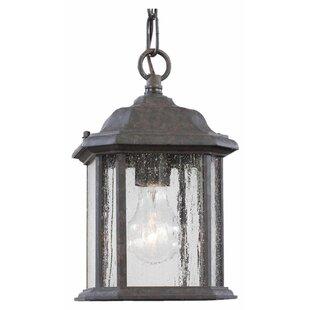 Darby Home Co Burtt 1-Light Outdoor Hanging Lantern