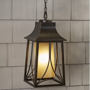 Stoutsville 1-Light Outdoor Hanging Lantern by Darby Home Co