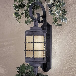 Gracie Oaks Calem 2-Light Outdoor Wall Lantern